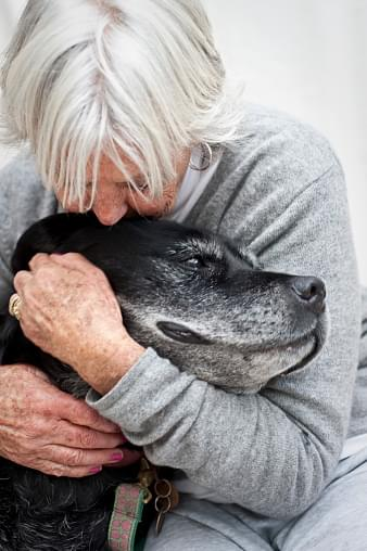 gray-haired person embracing older dog