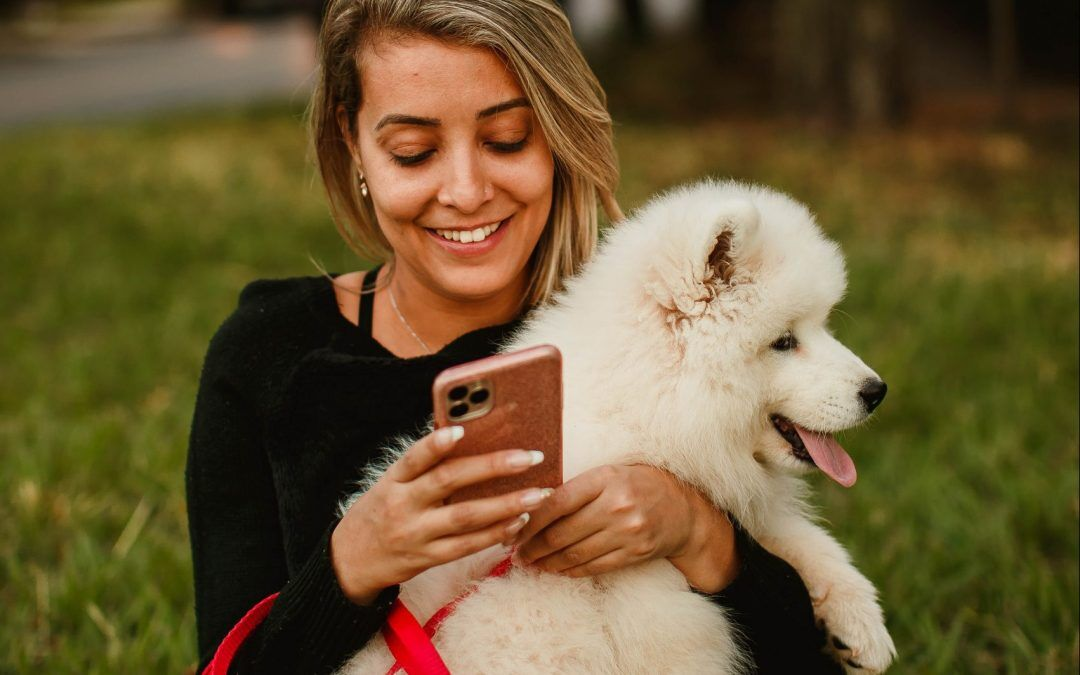 How to Make the Most of Virtual Pet Care